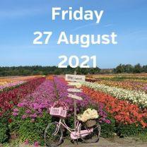 Visit dahlia fields 27 August 2021